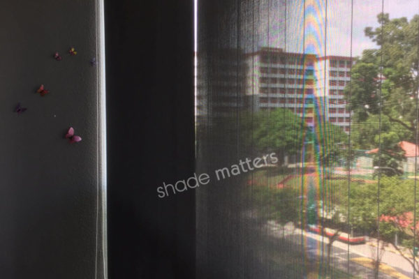 ShadeMatters-OutdoorRollerBlinds5